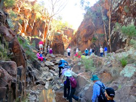 Arkaroola Walking Tour