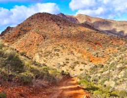 Arkaroola Group Tours
