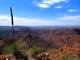 Arkaroola Wilderness