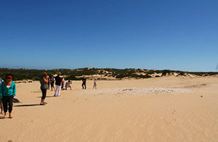 Walk in the Coorong