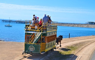 Historic Horse Drawn Tram