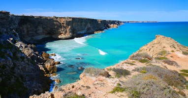 Head of Bight Eyre Peninsula Tours
