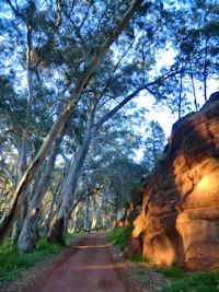 Flinders Ranges Walks