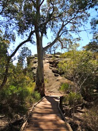 Flinders Ranges WalkingTrails