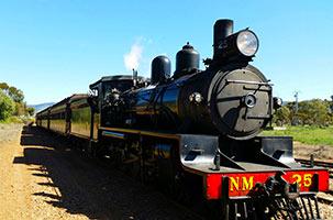 Pichi Richi Train