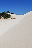 Little Sahara on Kangaroo Island
