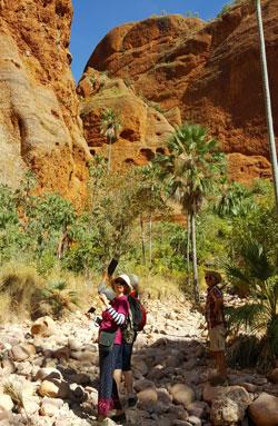 Walk to Echidna Chasm
