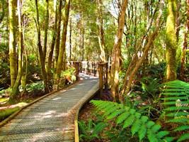 Tasmania National Parks